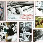 Kerstkaart foto's zijn ook allemaal zelf gemaakt